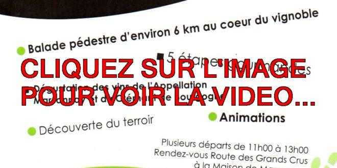 DIMANCHE 26 MAI 2019 LA VIDEO POUR LA PATARATE GOURMANDE A MARSANNAY-LA-COTE…